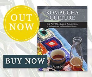 Make your own kombucha!