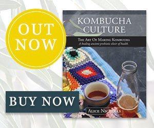 Make your own kombucha!